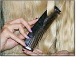 """LONGHAIRS® 2-TINE SCRITCHER 6"""" Stimulating Sheep - Ox Horn Comb - Image #3"""